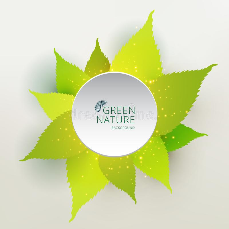Green leaves nature concept with label circle white color. You can use for design print, brochure, poster, banner, website. Vector illustration vector illustration
