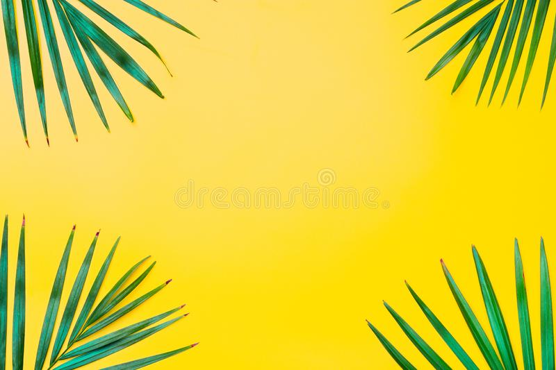 Green leaves of palm tree on yellow background. Flat lay minimal nature style of tropical palm leaves on yellow background. stock photos