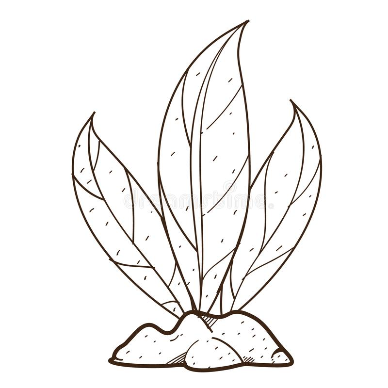 Green leaves, plant on the ground shrubs. Outline drawing for coloring on farming, growing of plants.  royalty free illustration