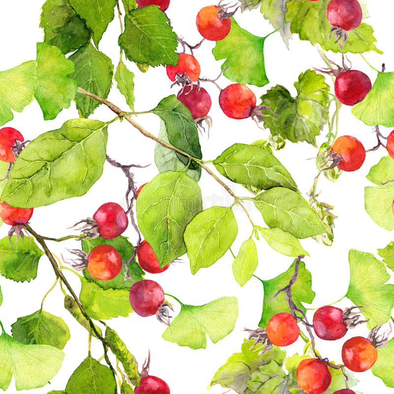 Green leaves, red berries. Seamless pattern. Watercolor vector illustration