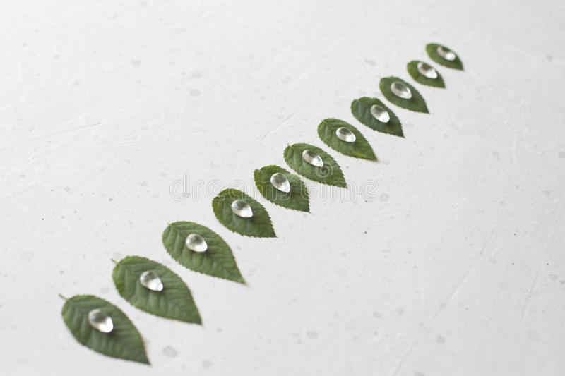 Green leaves from a rose lie in a row. Natural stone rock crystal. Unusual, unreal, surrealism, nature, ecology.  royalty free stock image