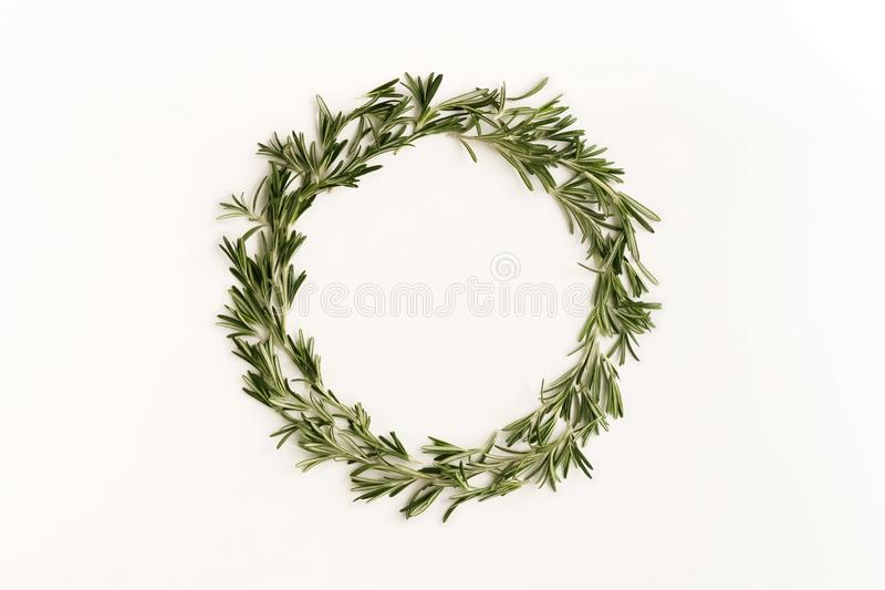 Green leaves rosemary herb pattern wreath frame on white background. Flat lay, top view. copy space. abstract stock photo