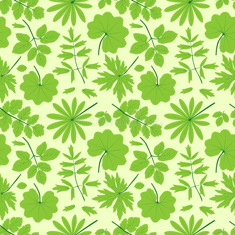 Download Green Leaves Seamless Pattern. Stock Vector - Image: 30885205