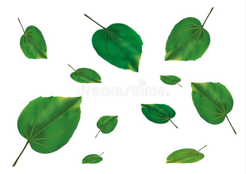 Green leaves. Vector green nature organic freash leaves stock illustration