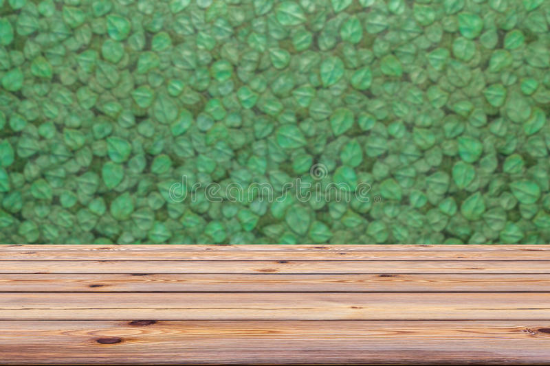 Green leaves wall and old wooden floor for background. You can b royalty free stock image
