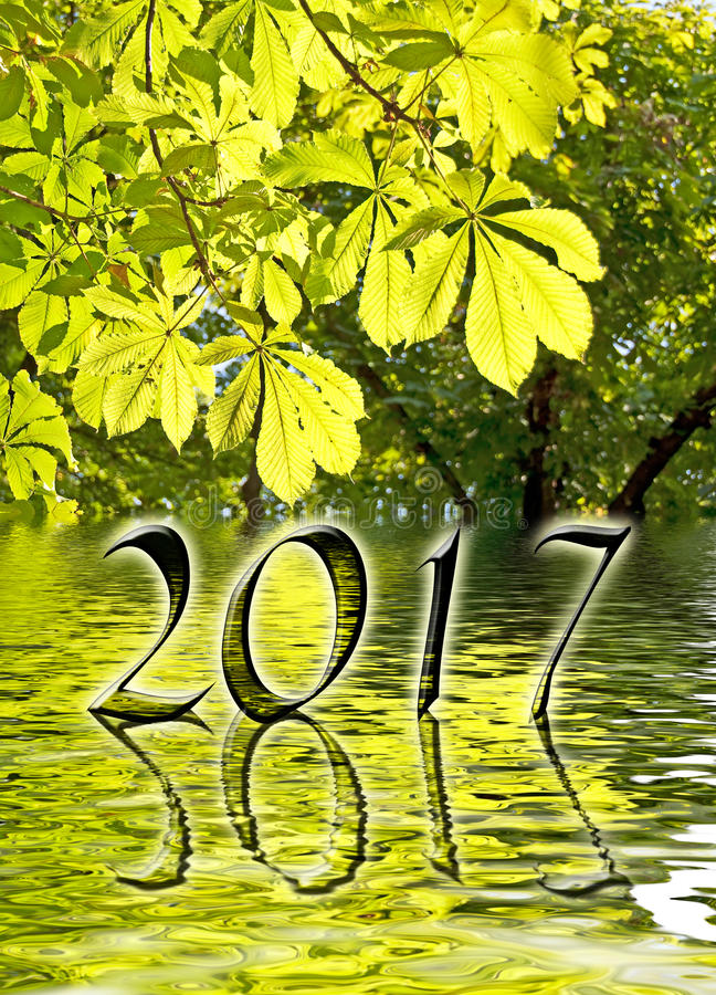 2017, Green leaves and water reflections. Greeting card stock image