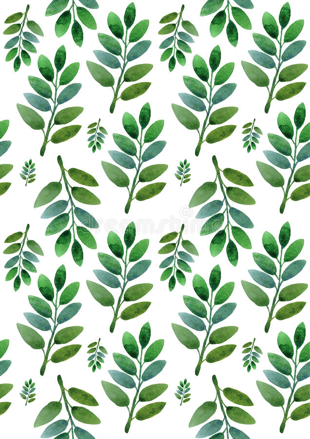 Green leaves on a white background vector illustration