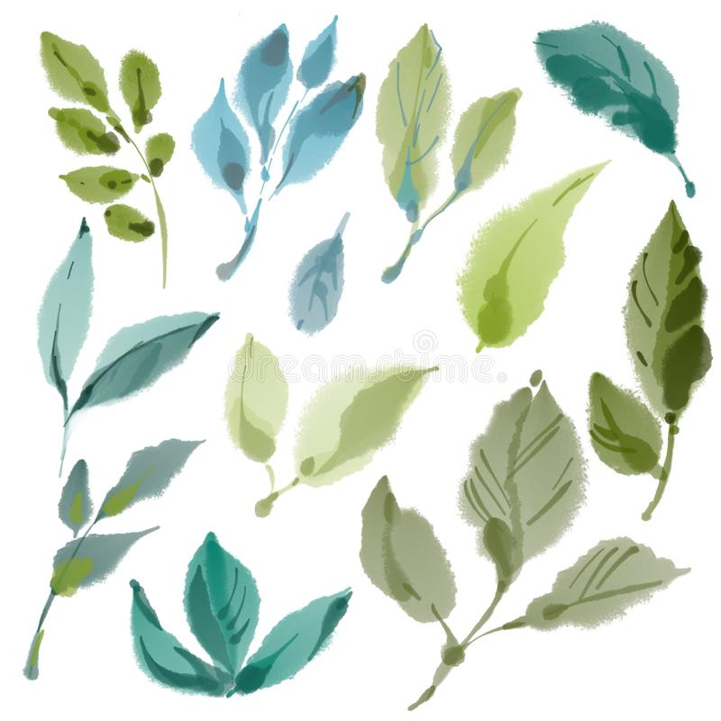 Green Leaves on white background, isolated. Set of painted digital watercolor decorative different green branches and stock illustration