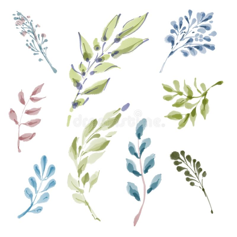 Green Leaves on white background, isolated. Set of painted digital watercolor decorative different green branches and vector illustration