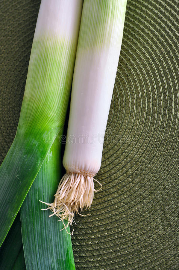 Green leek onion royalty free stock images