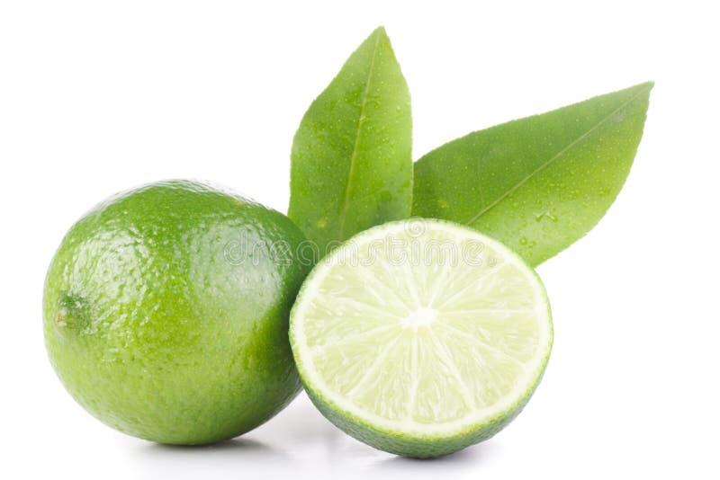 Green lemon and leaves stock image