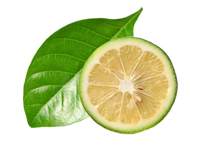 Green lemon and leaves stock image