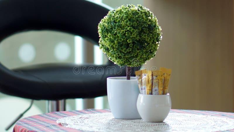 Green light cafe interior. Interior stock images