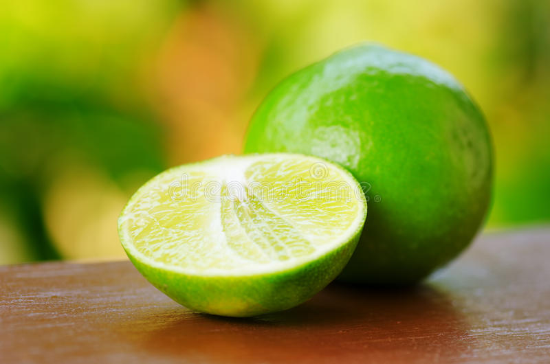Green lime in a garden royalty free stock photo