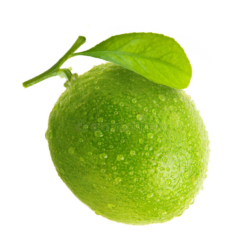 Download Green Lime With Water Drops Stock Image - Image of beverage, eating: 33493165