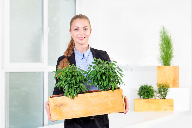 Green living. Attractive young businesswoman standing in modern loft office holding a box with plants. Environmental. Scientist or biologist at work. Student in royalty free stock images
