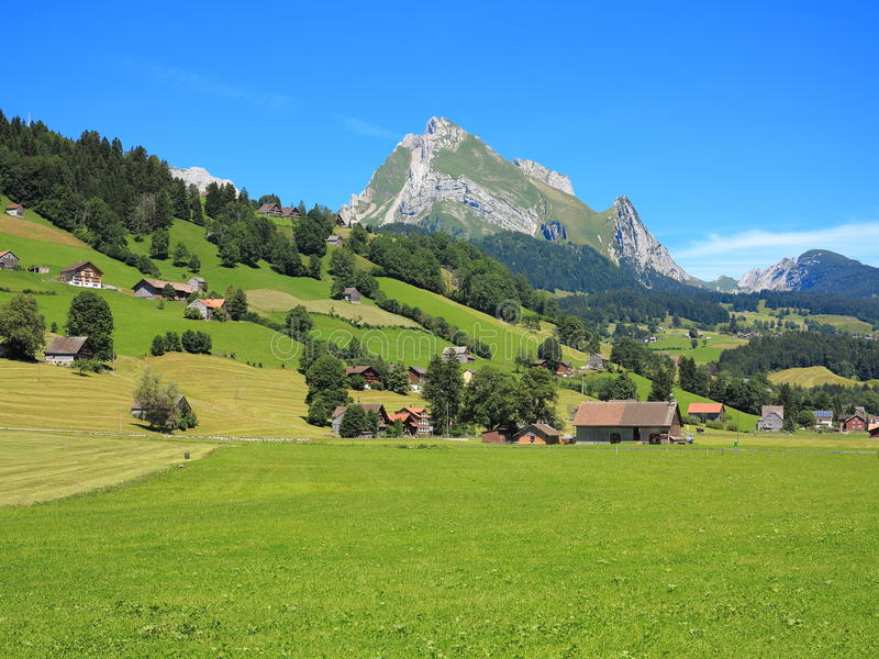 Green living in swiss Alpine landscape royalty free stock photo