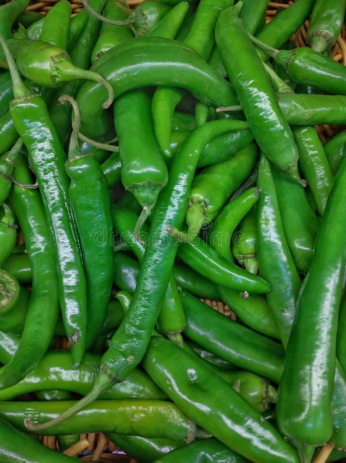 Green long peppers royalty free stock image