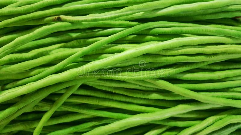 Green Long pod sold in the market, Vegetable natural background stock image