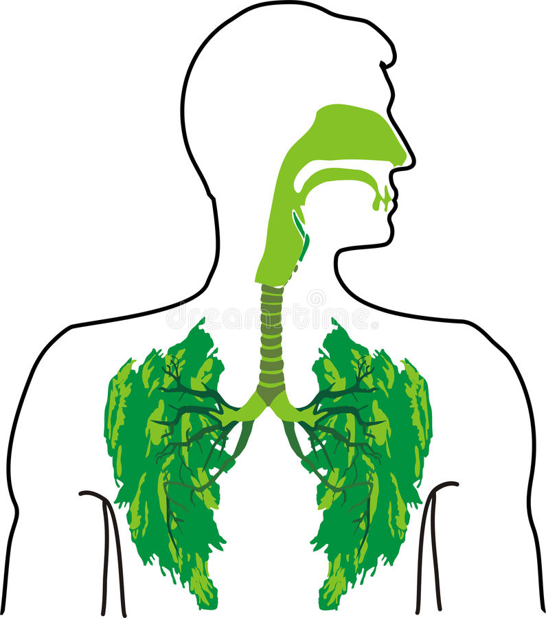 Green lung - a breath of fresh air stock illustration