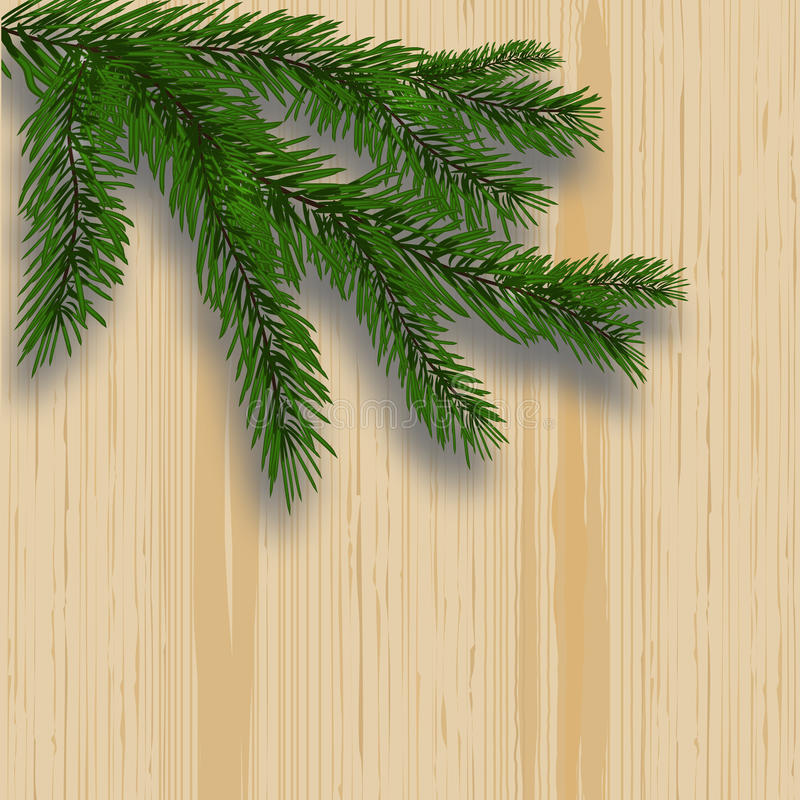 Green lush branch realistic fir trees and shade. Background with wooden texture. illustration royalty free illustration