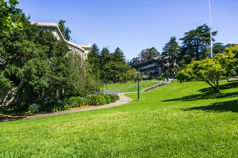 Green, lush meadow in the campus of UC Berkeley, San Francisco bay area, California royalty free stock photo