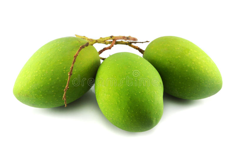 green mango stock photo image 40702989