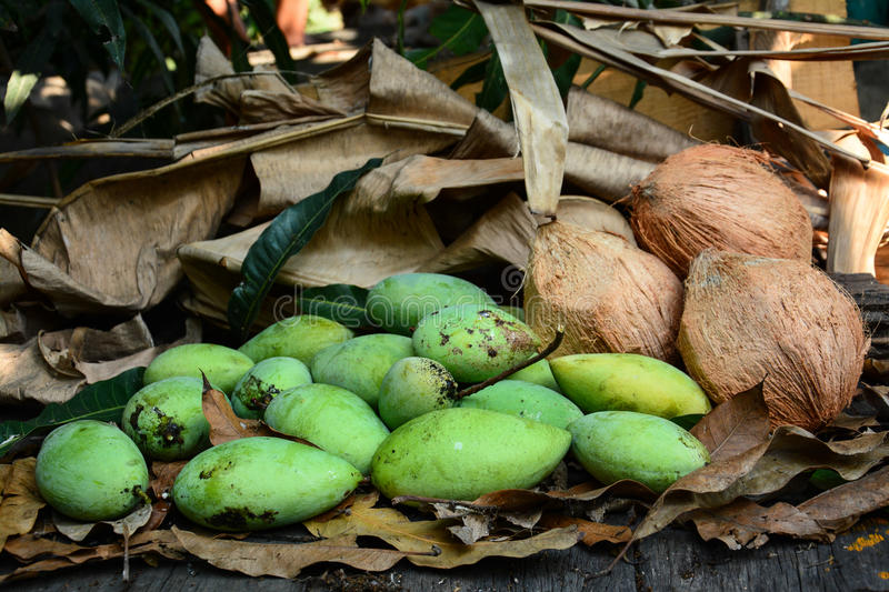 Download Green Mangoes With Coconuts  On Dry Leafs Stock Image - Image: 37766419