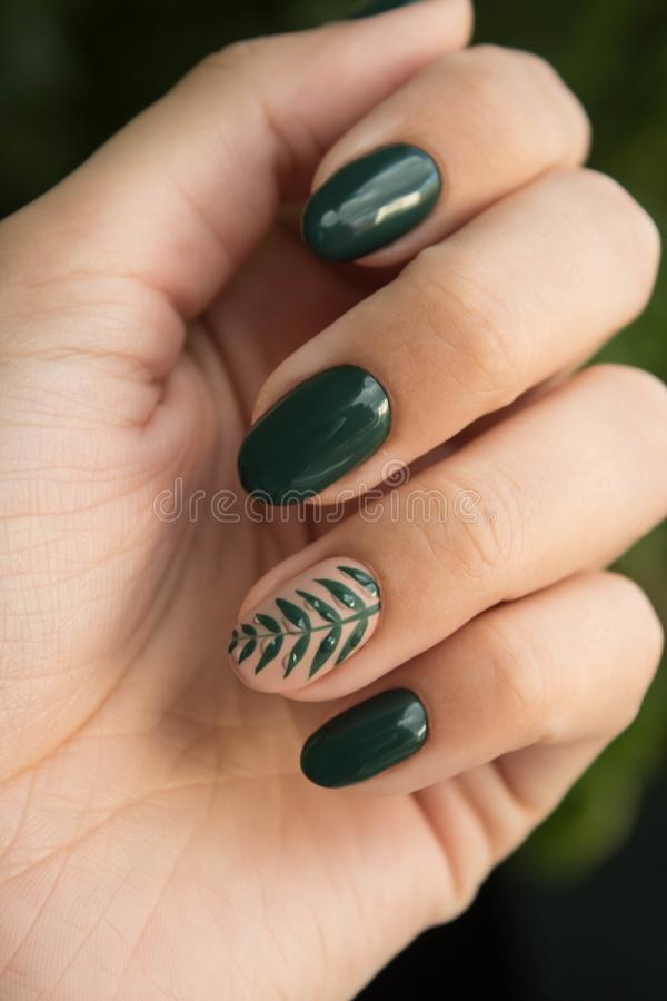 Green Manicure Art Close Up Photo stock image