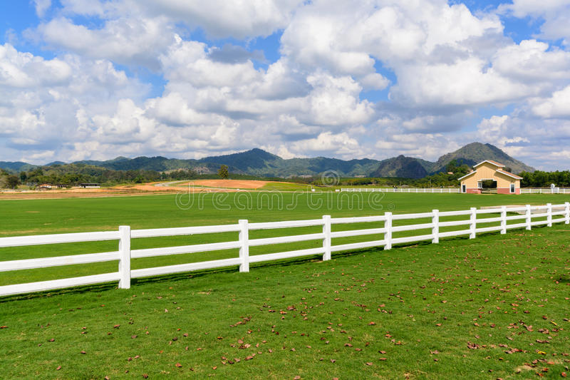 Green meadow with blue sky and white fence. Countryside view royalty free stock images