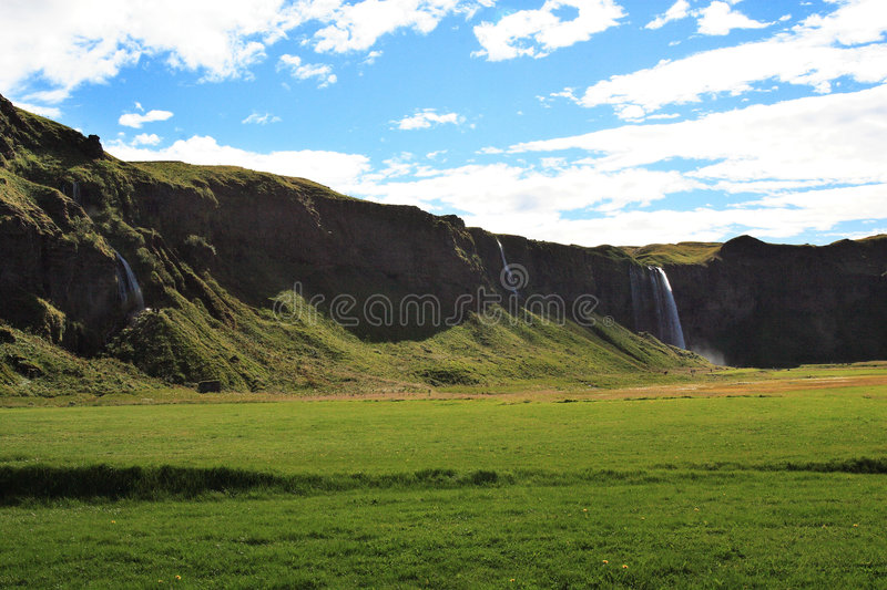 Green Meadow and Cliffs of Iceland royalty free stock image