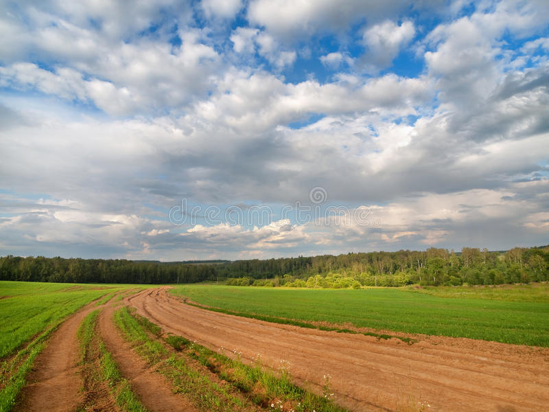 Green Meadow With Cloudy Blue Sky Stock Image