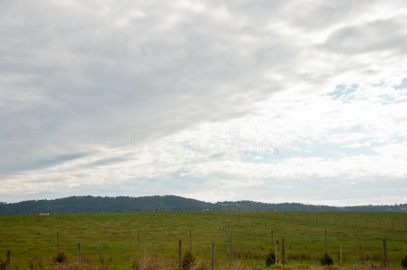 Green meadow countryside mountain in Yarravalley Victoria Australia. Green meadow countryside mountain in Yarra valley Victoria Australia in the afternoon stock images