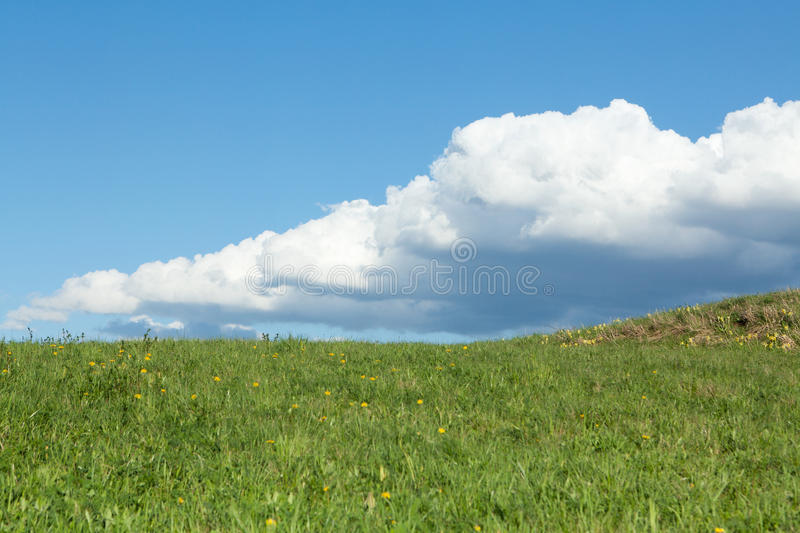 Download Green Meadow With Cumulus Clouds Stock Image - Image: 24441183