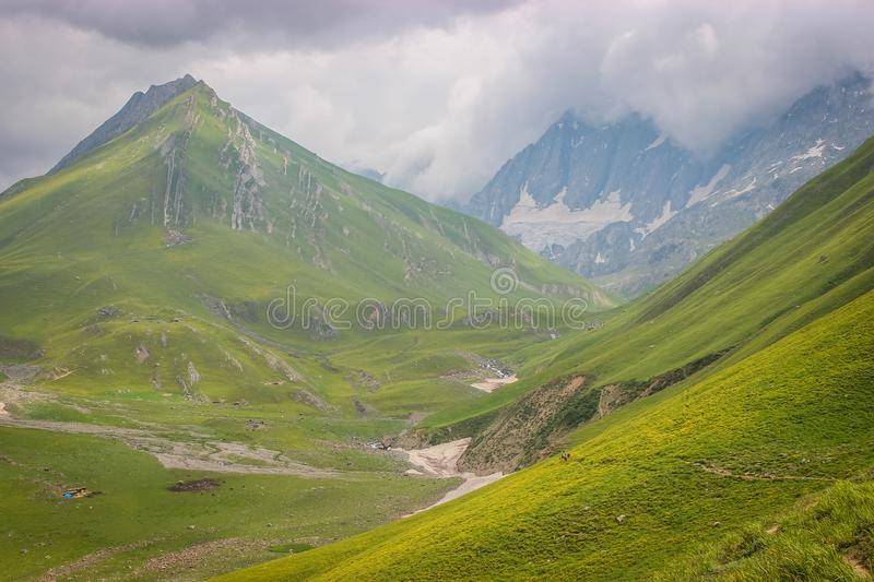 Green meadow landscape high up in the HImalayas. Great Lake Trek in Kashmir. Mountains in Gangabal Lake vicinity royalty free stock images