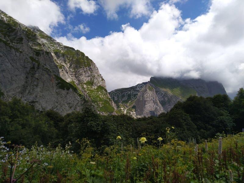 Green meadow and mountains sky stock photos