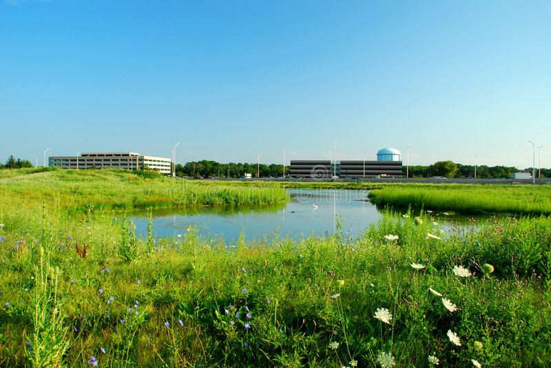Green Meadow And Office Buildings Royalty Free Stock Photography