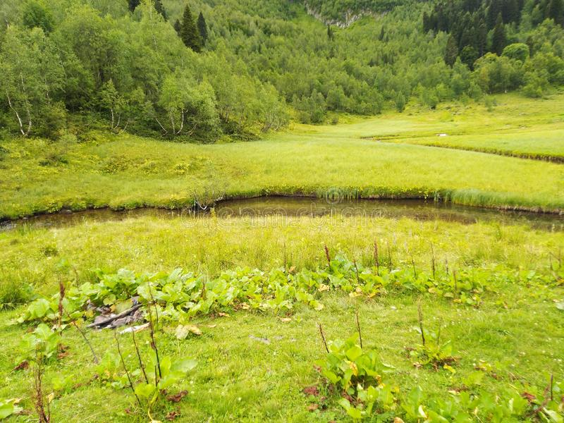 Green meadow and river royalty free stock photos