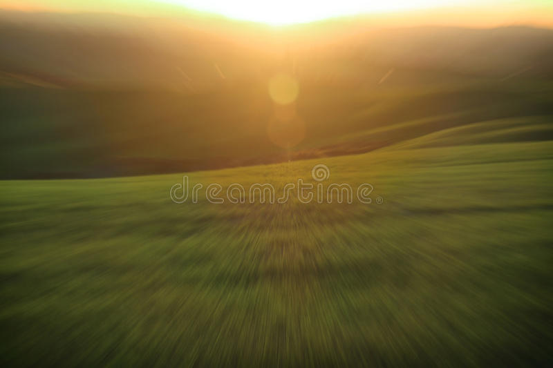 Green Meadow and Sunlight Abstract royalty free stock photography