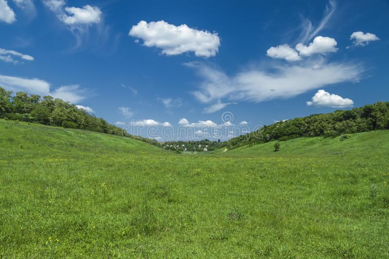 Green meadow under blue sky with clouds, nature background stock image