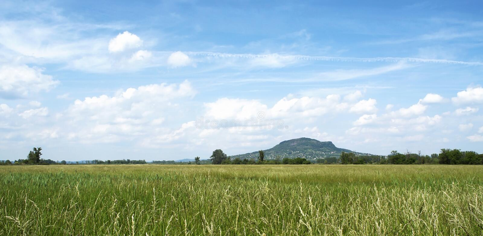 Green meadow and volcano stock images