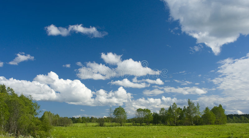 Download Green Meadow And White Clouds II Royalty Free Stock Image - Image: 6331806