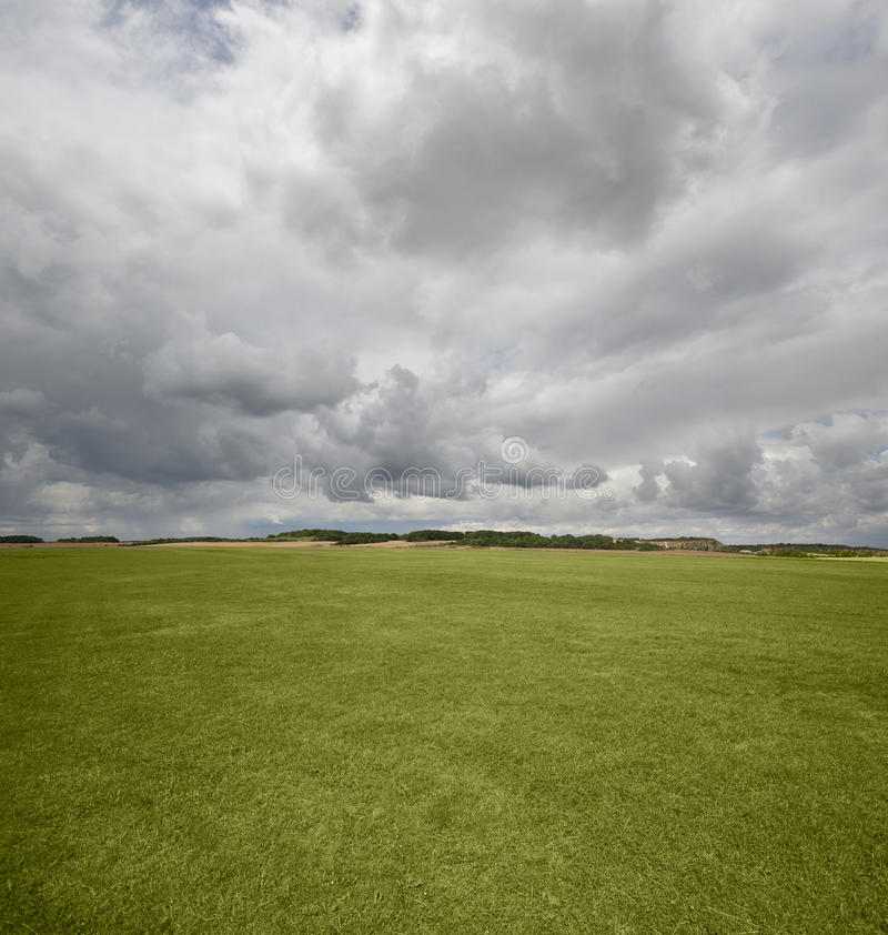 Green meadows. With the cloudy sky stock images