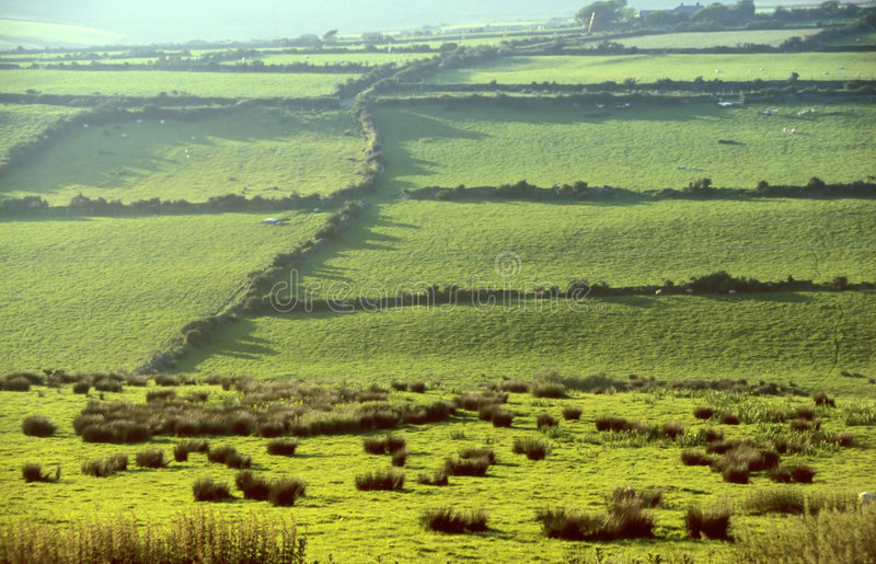 Green meadows. In County Kerry, Ireland royalty free stock images