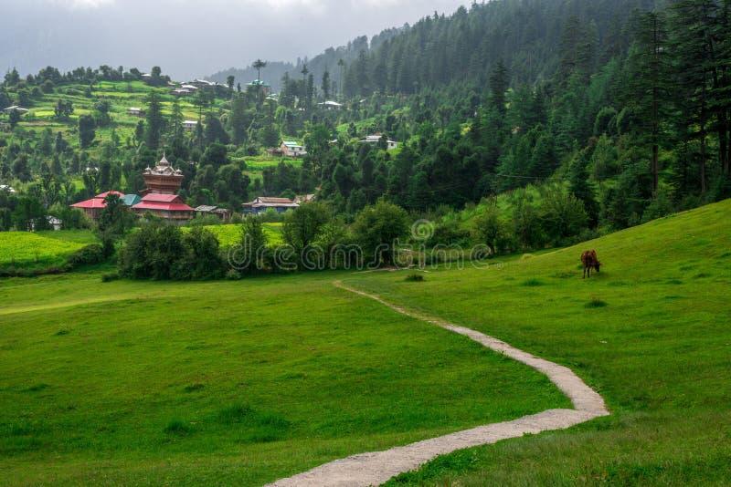 Green meadows in himalayas, Great Himalayan National Park, Sainj Valley, Himachal Pradesh, India. Panoramic view of green meadows in himalayas, Great Himalayan stock image