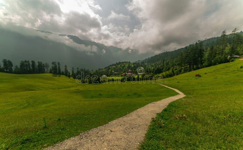 Green meadows in himalayas, Great Himalayan National Park, Sainj Valley, Himachal Pradesh, India. Panoramic view of green meadows in himalayas, Great Himalayan stock photography