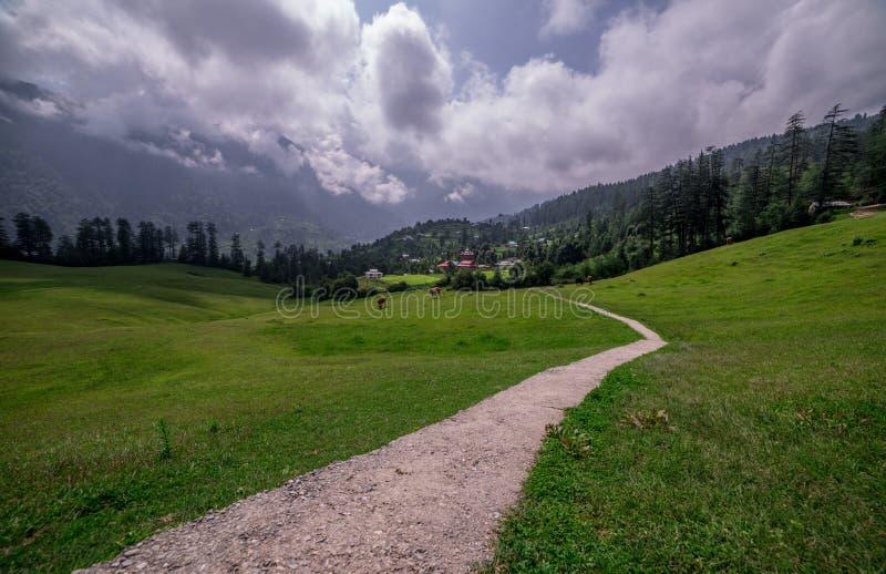 Green meadows in himalayas, Great Himalayan National Park, Sainj Valley, Himachal Pradesh, India. Panoramic view of green meadows in himalayas, Great Himalayan stock images
