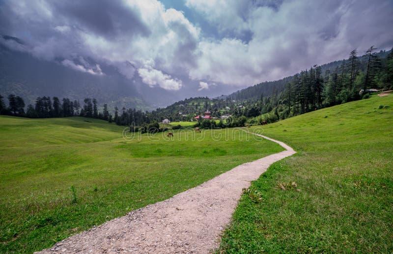 Green meadows in himalayas, Great Himalayan National Park, Sainj Valley, Himachal Pradesh, India. Panoramic view of green meadows in himalayas, Great Himalayan royalty free stock photos