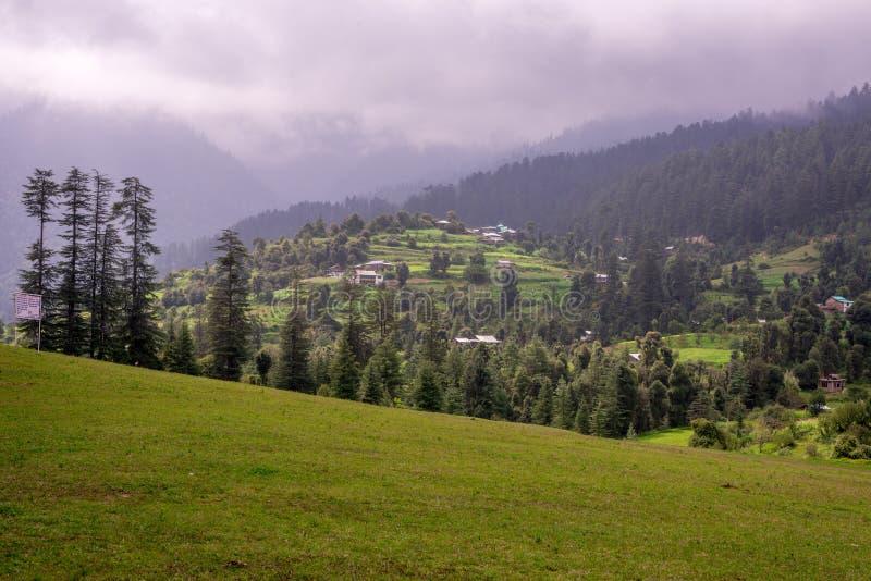 Green meadows in himalayas, Great Himalayan National Park, Sainj Valley, Himachal Pradesh, India. Panoramic view of green meadows in himalayas, Great Himalayan royalty free stock photography