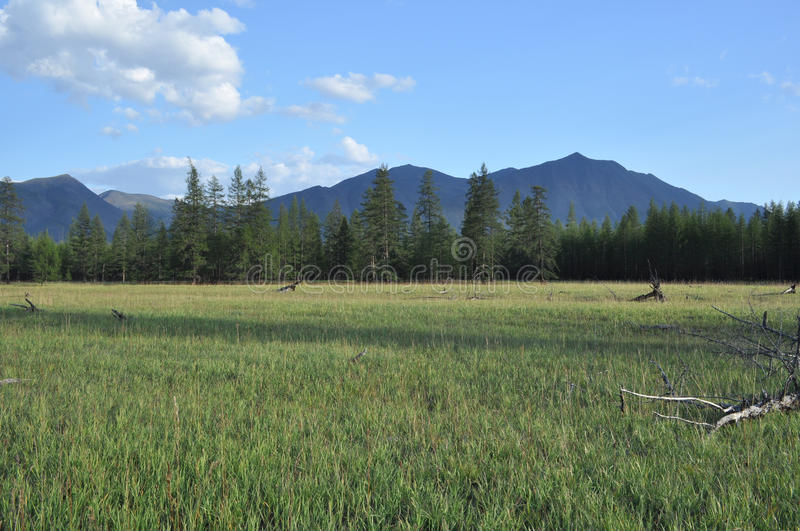 Download Green Meadows In Mountain Valley Stock Photo - Image: 38933724